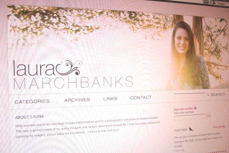 Laura Marchbanks Photography Wordpress Blog